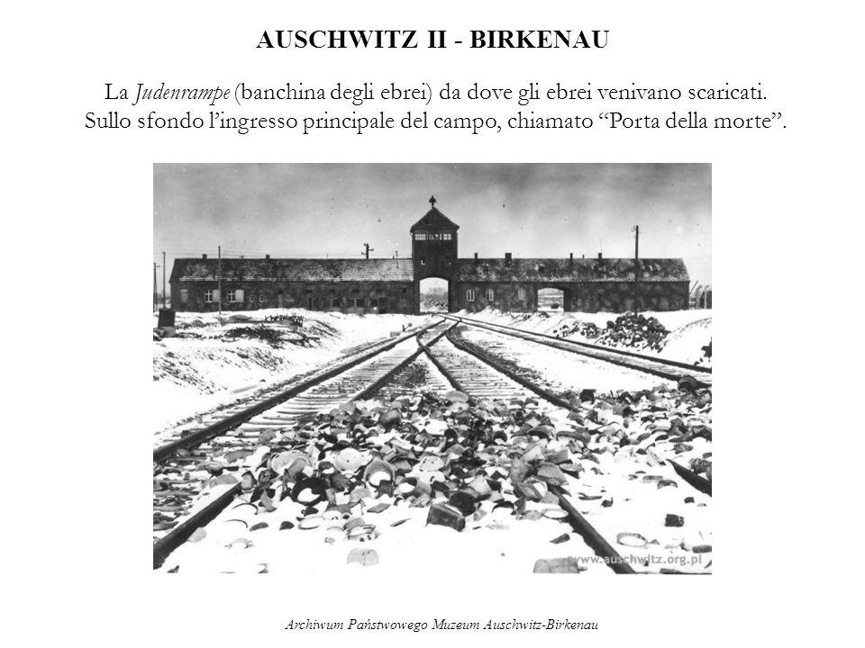 AUSCHWITZ II - BIRKENAU La Judenrampe (banchina degli ebrei) da dove gli ebrei venivano scaricati. Sullo sfondo lingresso principale del campo, chiama