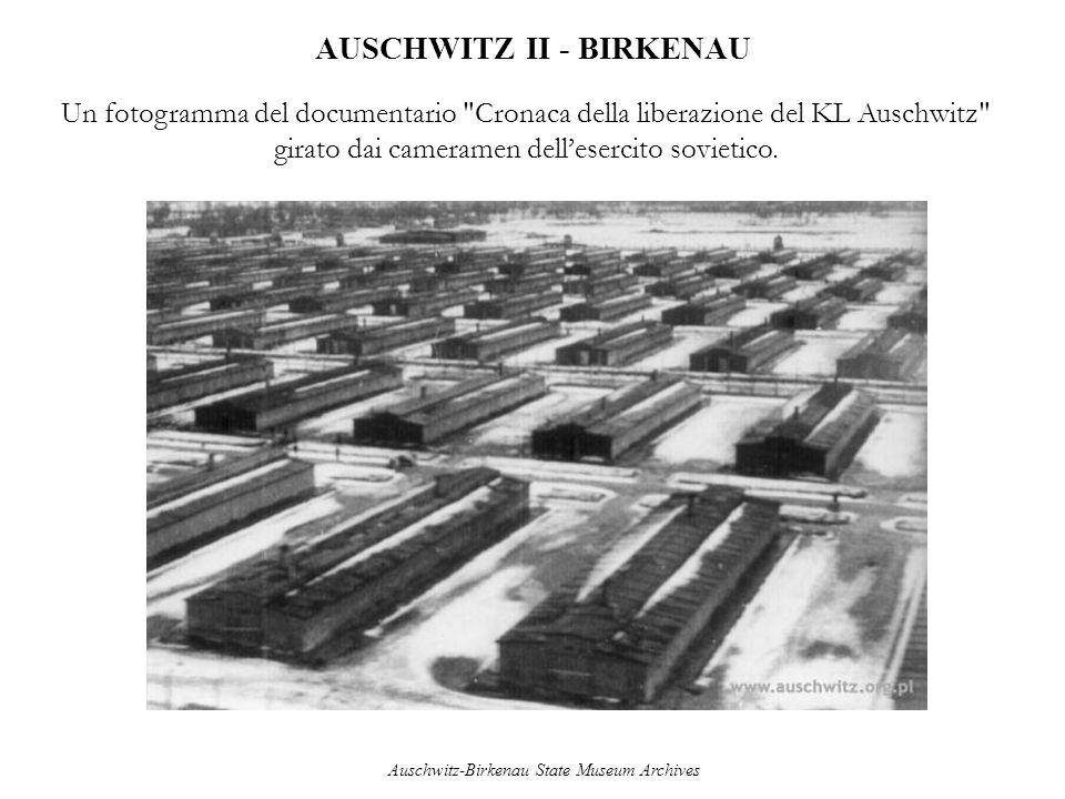 AUSCHWITZ II - BIRKENAU Un fotogramma del documentario