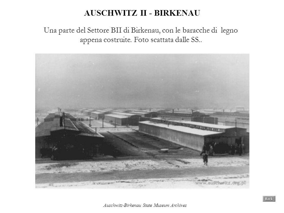 AUSCHWITZ II - BIRKENAU Una parte del Settore BII di Birkenau, con le baracche di legno appena costruite. Foto scattata dalle SS.. Auschwitz-Birkenau