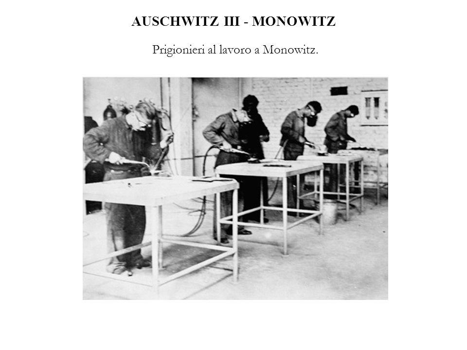 AUSCHWITZ III - MONOWITZ Prigionieri al lavoro a Monowitz.