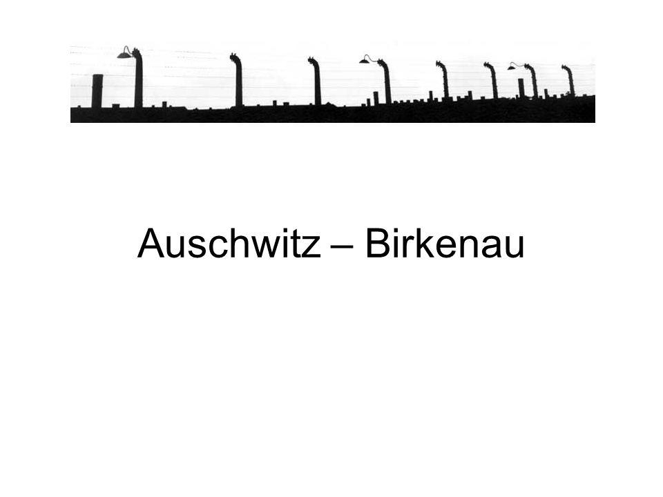 AUSCHWITZ II - BIRKENAU La Judenrampe (banchina degli ebrei) da dove gli ebrei venivano scaricati.