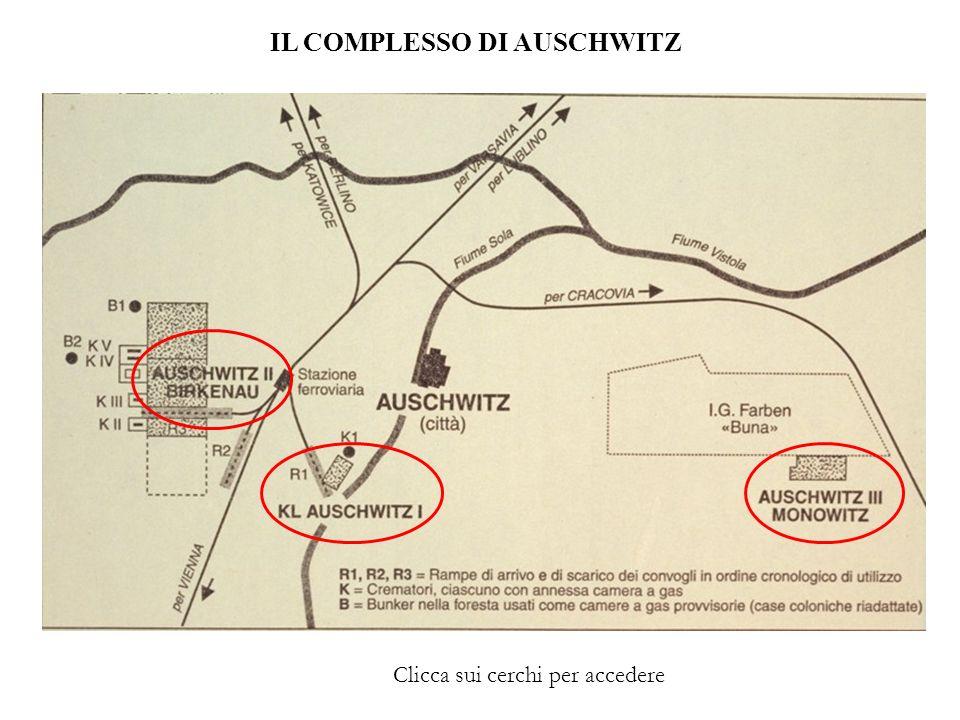 AUSCHWITZ II - BIRKENAU Un fotogramma del documentario Cronaca della liberazione del KL Auschwitz girato dai cameramen dellesercito sovietico.