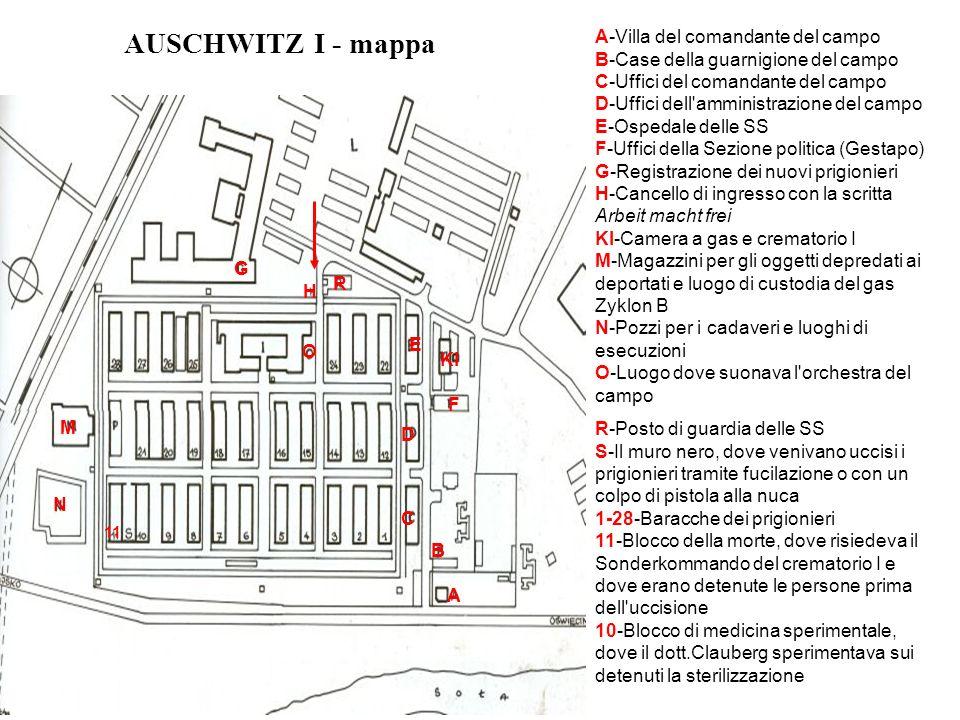 AUSCHWITZ II - BIRKENAU Una parte del Settore BII di Birkenau, con le baracche di legno appena costruite.