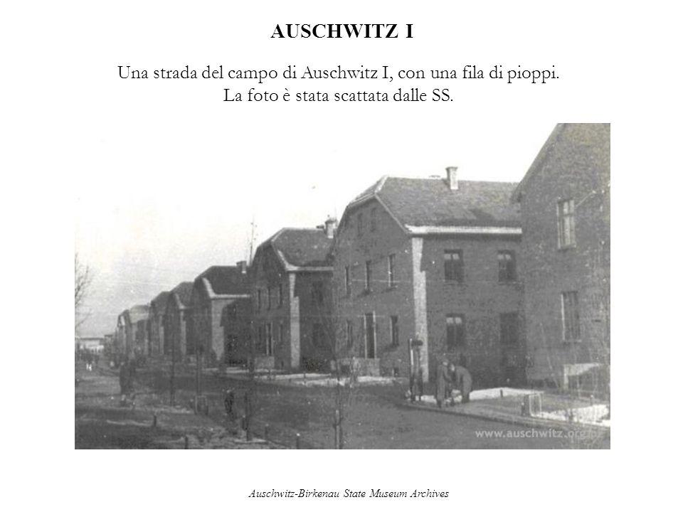 AUSCHWITZ I Una strada del campo di Auschwitz I, con una fila di pioppi. La foto è stata scattata dalle SS. Auschwitz-Birkenau State Museum Archives