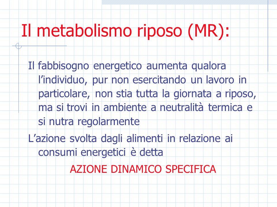 Il metabolismo riposo (MR): Il fabbisogno energetico aumenta qualora lindividuo, pur non esercitando un lavoro in particolare, non stia tutta la giorn