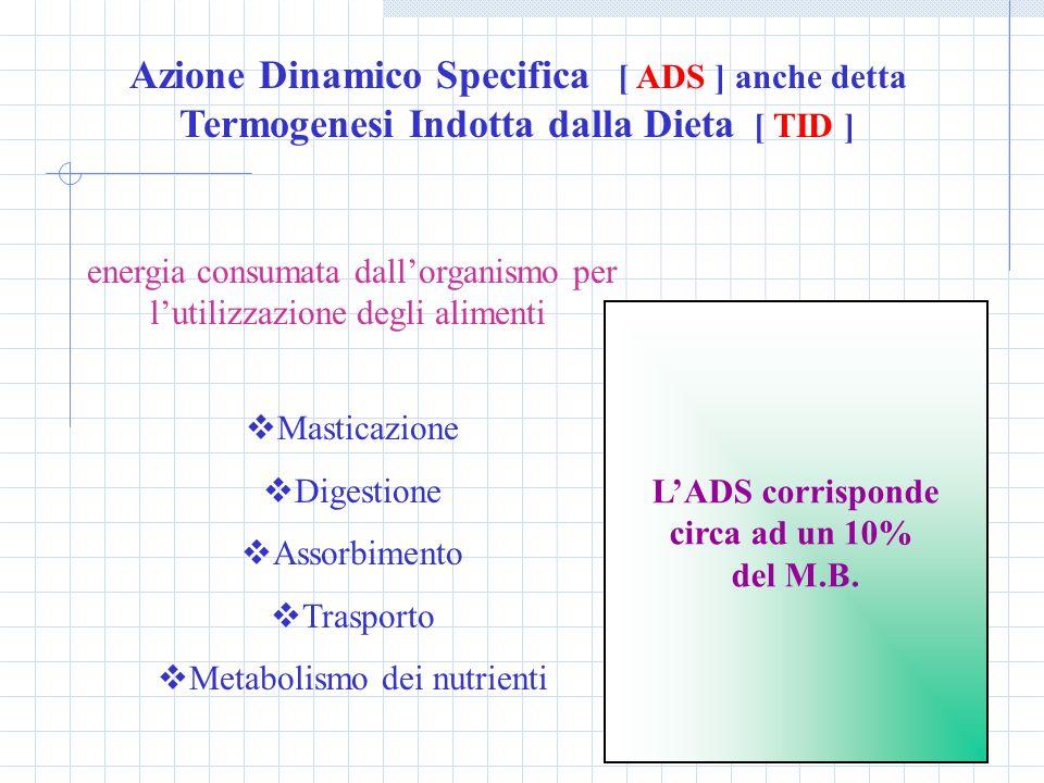 Azione Dinamico Specifica [ ADS ] anche detta Termogenesi Indotta dalla Dieta [ TID ] energia consumata dallorganismo per lutilizzazione degli aliment