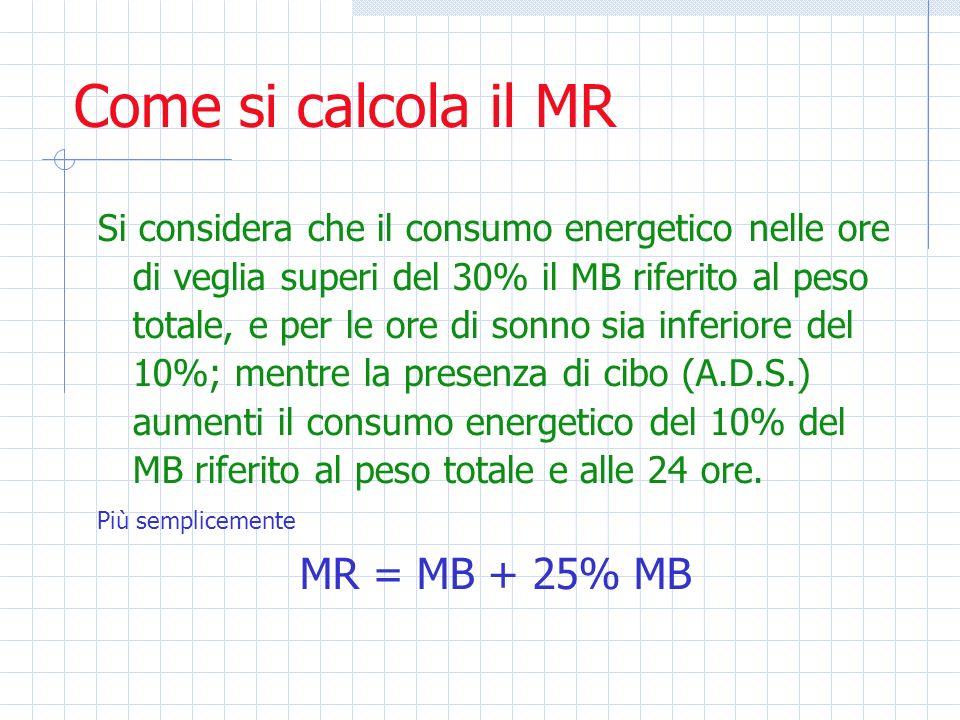 Come si calcola il MR Si considera che il consumo energetico nelle ore di veglia superi del 30% il MB riferito al peso totale, e per le ore di sonno s