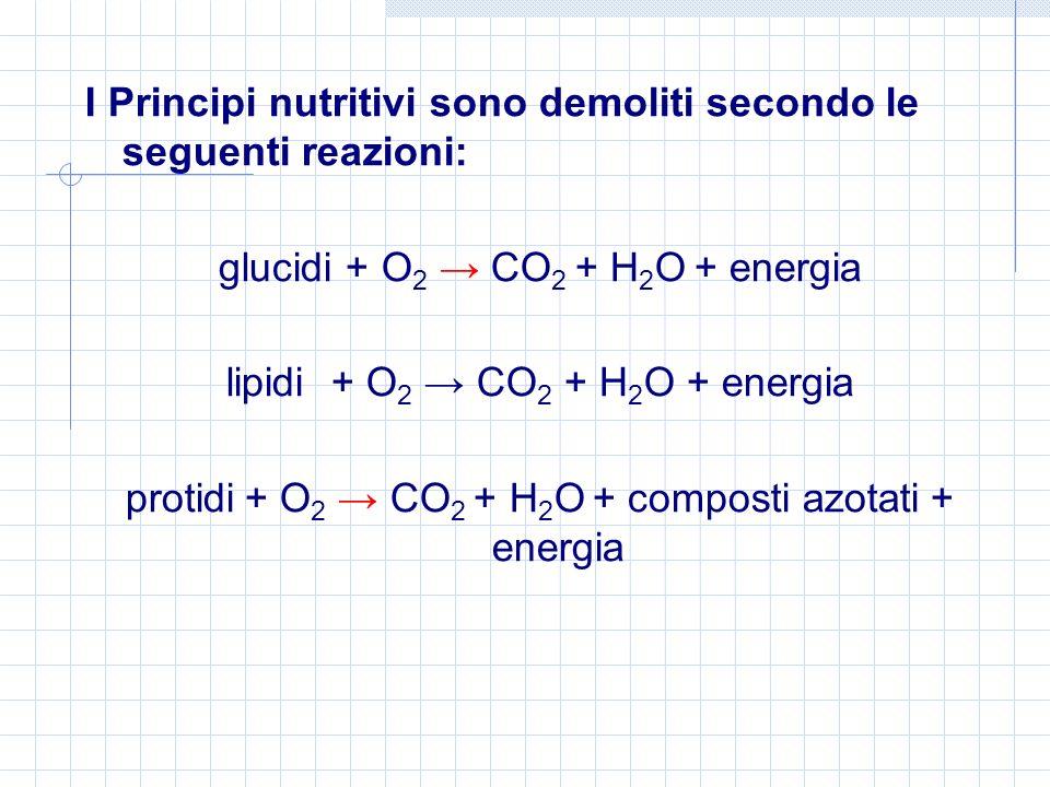 I Principi nutritivi sono demoliti secondo le seguenti reazioni: glucidi + O 2 CO 2 + H 2 O + energia lipidi + O 2 CO 2 + H 2 O + energia protidi + O