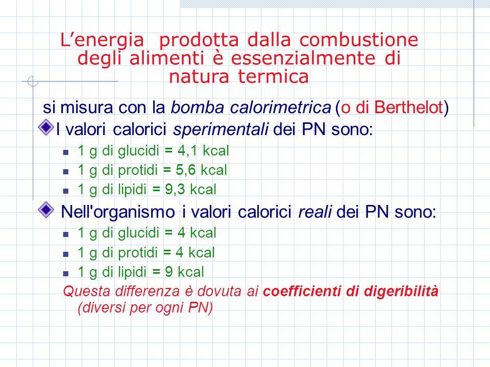 si misura con la bomba calorimetrica (o di Berthelot) I valori calorici sperimentali dei PN sono: 1 g di glucidi = 4,1 kcal 1 g di protidi = 5,6 kcal