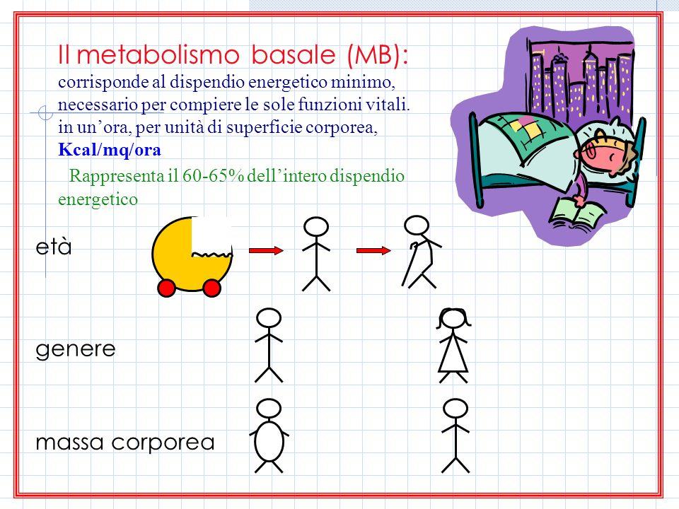 Il metabolismo basale (MB): corrisponde al dispendio energetico minimo, necessario per compiere le sole funzioni vitali. in unora, per unità di superf
