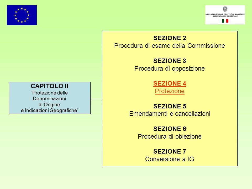 CAPITOLO II Protezione delle Denominazioni di Origine e Indicazioni Geografiche SEZIONE 2 Procedura di esame della Commissione SEZIONE 3 Procedura di