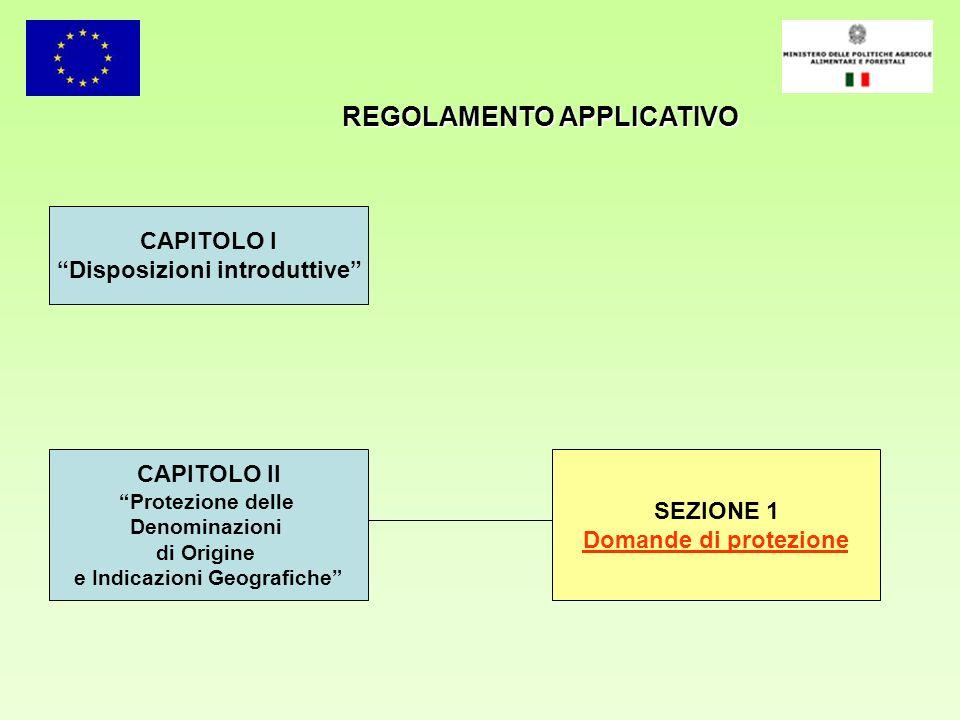 REGOLAMENTO APPLICATIVO CAPITOLO I Disposizioni introduttive CAPITOLO II Protezione delle Denominazioni di Origine e Indicazioni Geografiche SEZIONE 1