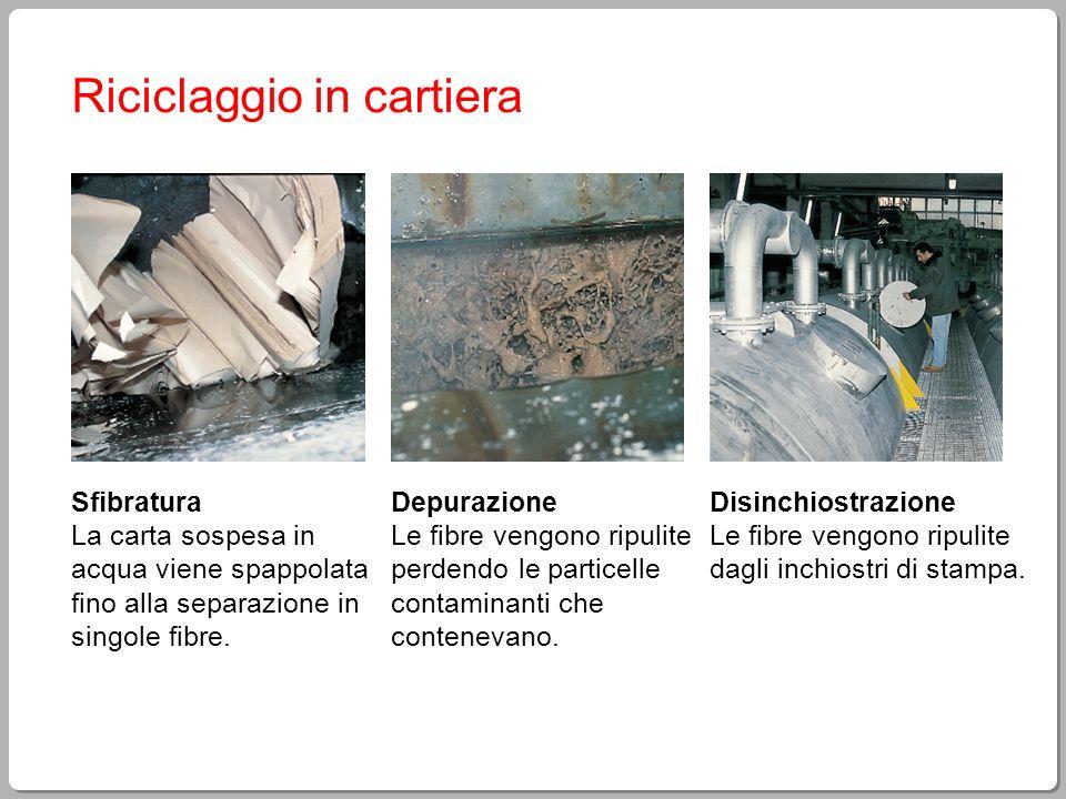 Riciclaggio in cartiera Sfibratura La carta sospesa in acqua viene spappolata fino alla separazione in singole fibre. Depurazione Le fibre vengono rip