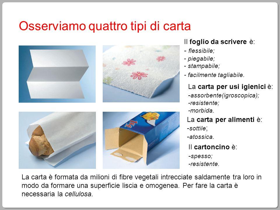 Osserviamo quattro tipi di carta Il foglio da scrivere è: - flessibile; - piegabile; - stampabile; - facilmente tagliabile. Il cartoncino è: - spesso;