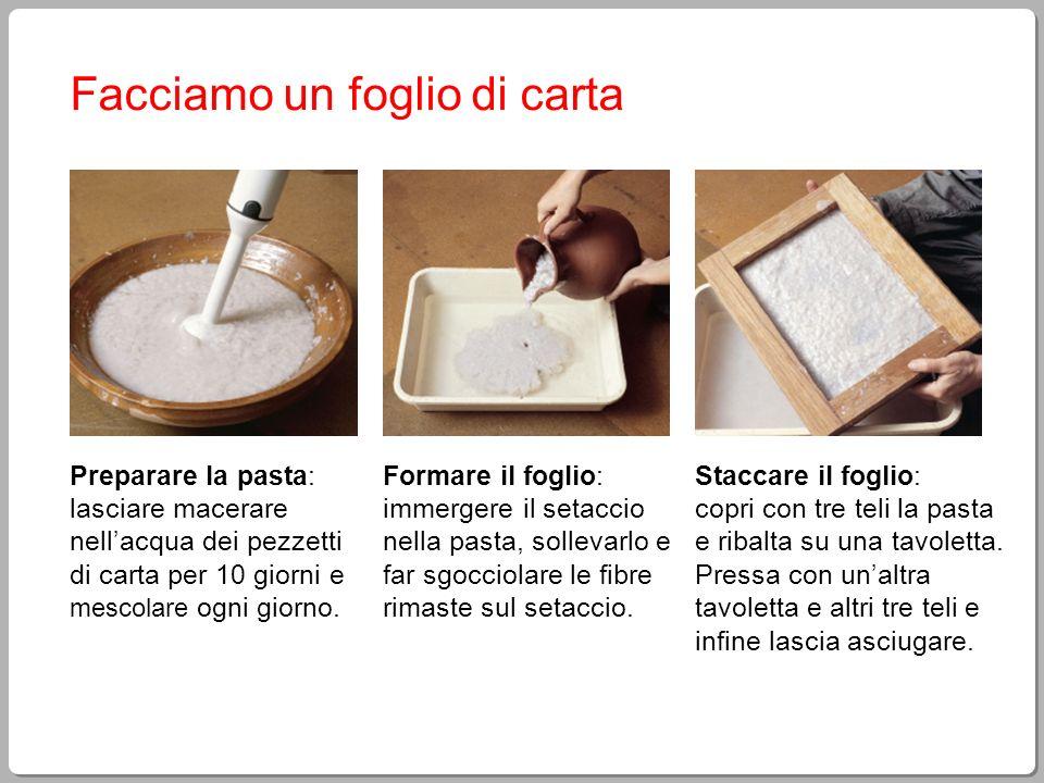 Facciamo un foglio di carta Preparare la pasta: lasciare macerare nellacqua dei pezzetti di carta per 10 giorni e mescolare ogni giorno. Formare il fo