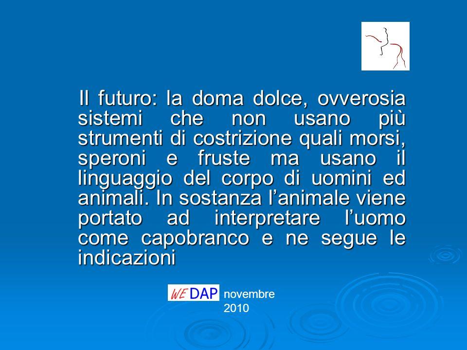 novembre 2010 Il futuro: la doma dolce, ovverosia sistemi che non usano più strumenti di costrizione quali morsi, speroni e fruste ma usano il linguag