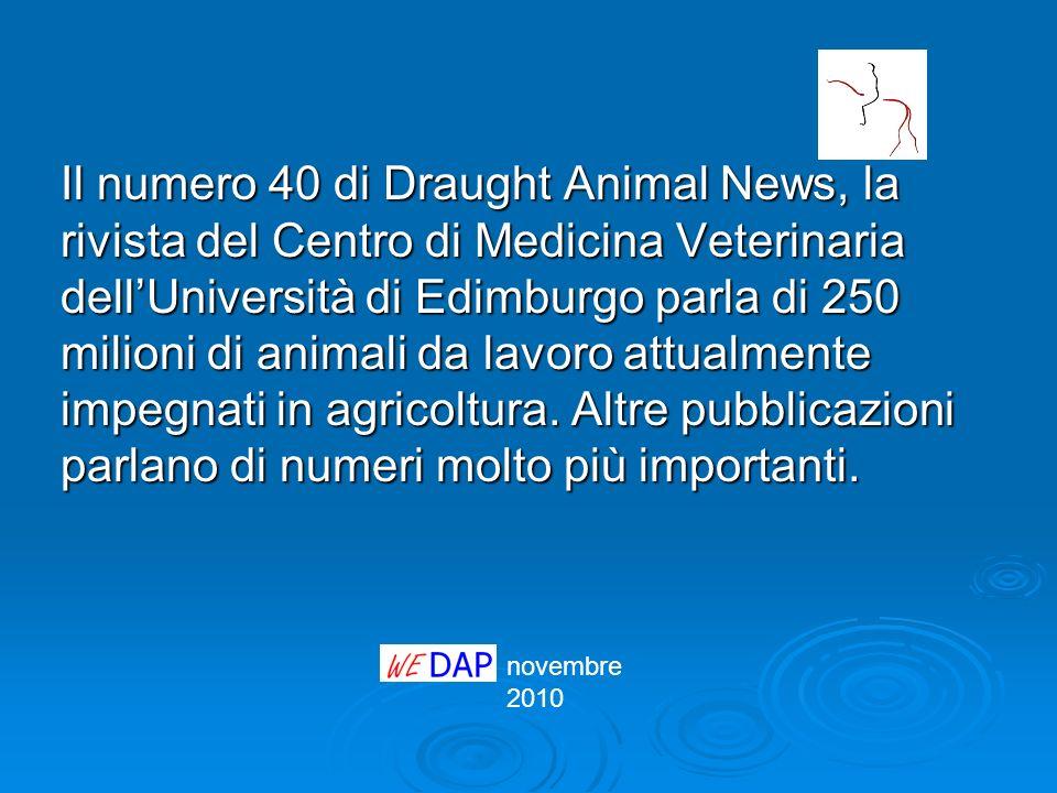 Il numero 40 di Draught Animal News, la rivista del Centro di Medicina Veterinaria dellUniversità di Edimburgo parla di 250 milioni di animali da lavo
