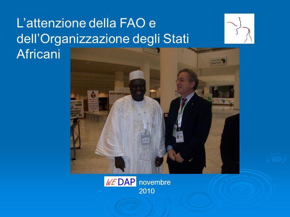 novembre 2010 Lattenzione della FAO e dellOrganizzazione degli Stati Africani