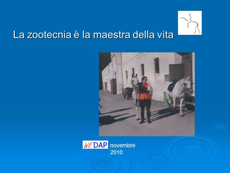 novembre 2010 La zootecnia è la maestra della vita