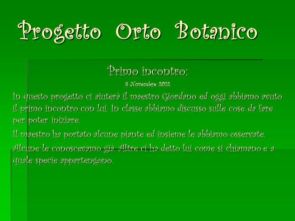 Progetto Orto Botanico Primo incontro: 8 Novembre 2012 In questo progetto ci aiuterà il maestro Giordano ed oggi abbiamo avuto il primo incontro con l