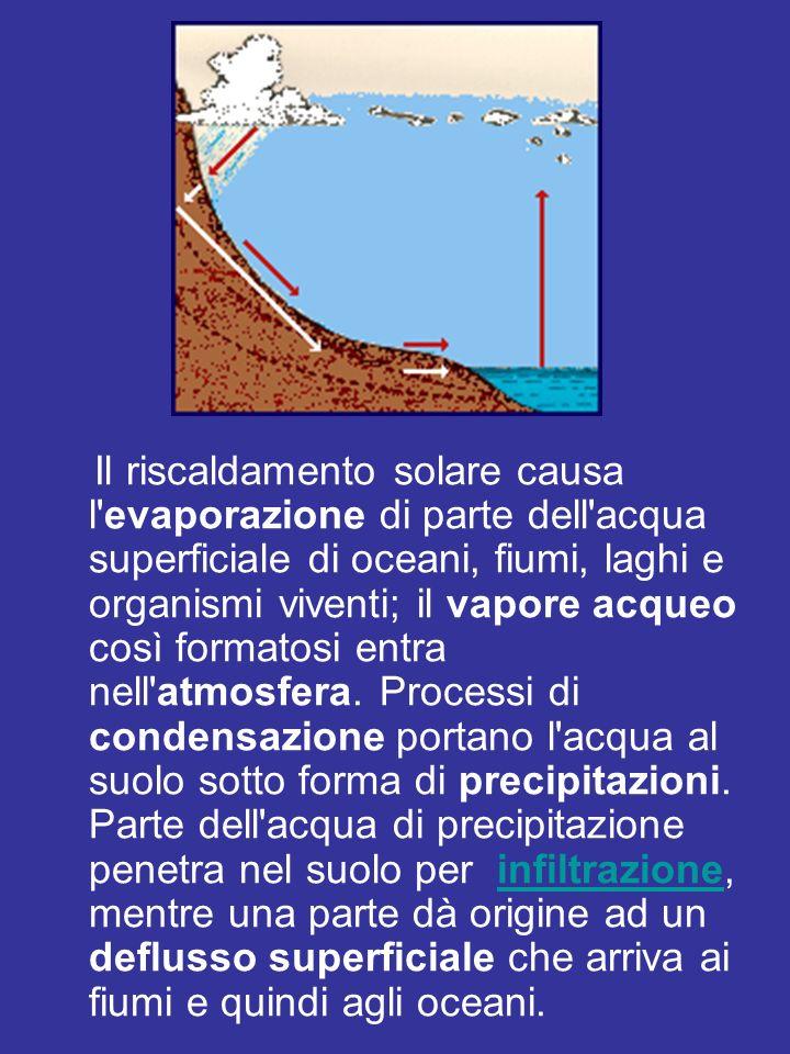 Il riscaldamento solare causa l'evaporazione di parte dell'acqua superficiale di oceani, fiumi, laghi e organismi viventi; il vapore acqueo così forma