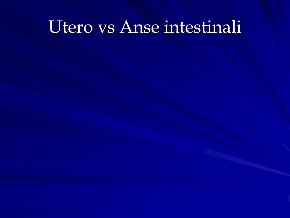 Utero vs Anse intestinali