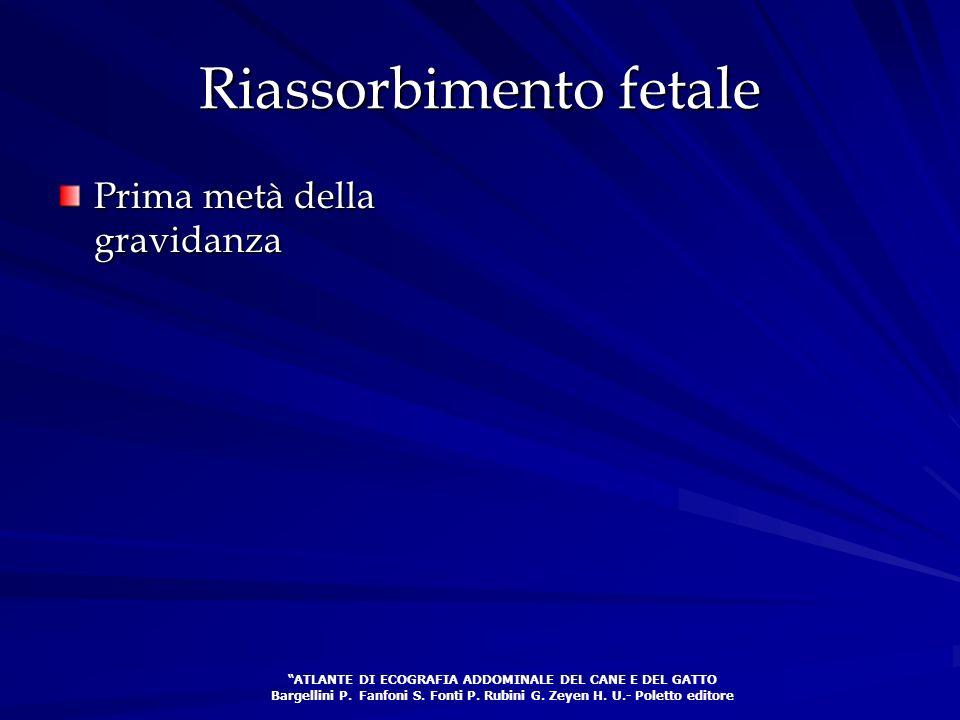 Riassorbimento fetale Prima metà della gravidanza ATLANTE DI ECOGRAFIA ADDOMINALE DEL CANE E DEL GATTO Bargellini P. Fanfoni S. Fonti P. Rubini G. Zey