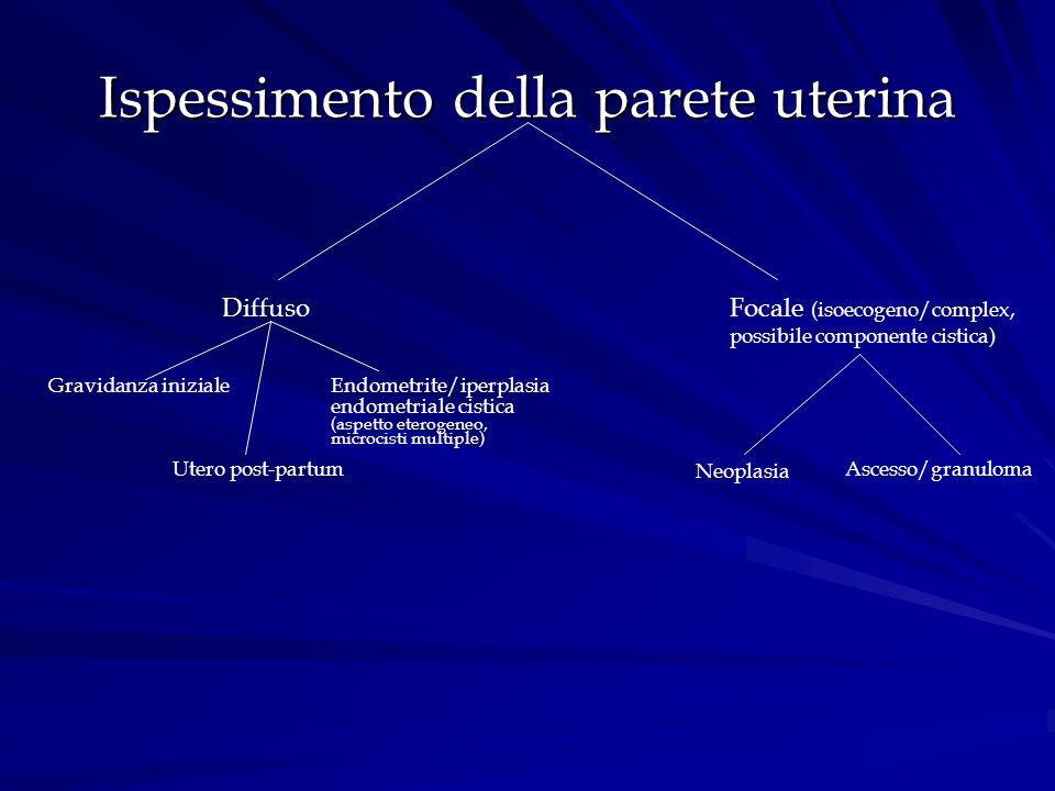 Ispessimento della parete uterina DiffusoFocale (isoecogeno/complex, possibile componente cistica) Gravidanza iniziale Utero post-partum Endometrite/i
