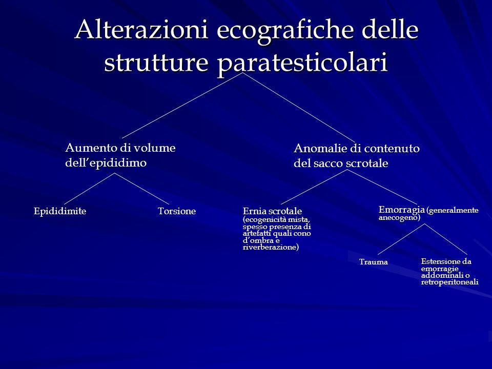 Alterazioni ecografiche delle strutture paratesticolari Aumento di volume dellepididimo Anomalie di contenuto del sacco scrotale EpididimiteTorsione E