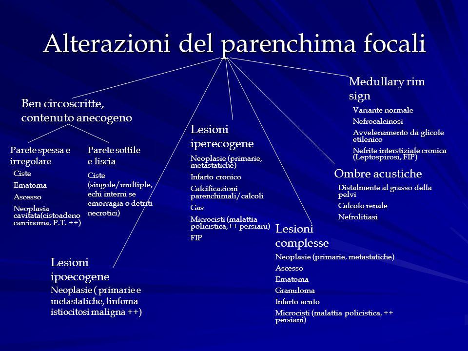 Alterazioni del parenchima focali Ben circoscritte, contenuto anecogeno Lesioni ipoecogene Lesioni iperecogene Lesioni complesse Medullary rim sign Om