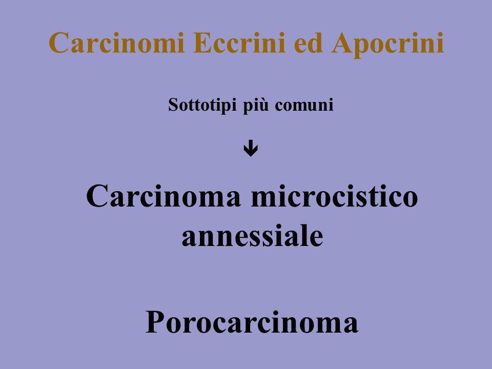 Carcinoma microcistico annessiale Più frequente sulla regione della faccia in particolare sullarea nasolabiale In letteratura solo 8 casi con metastasi locoregionali e a distanza