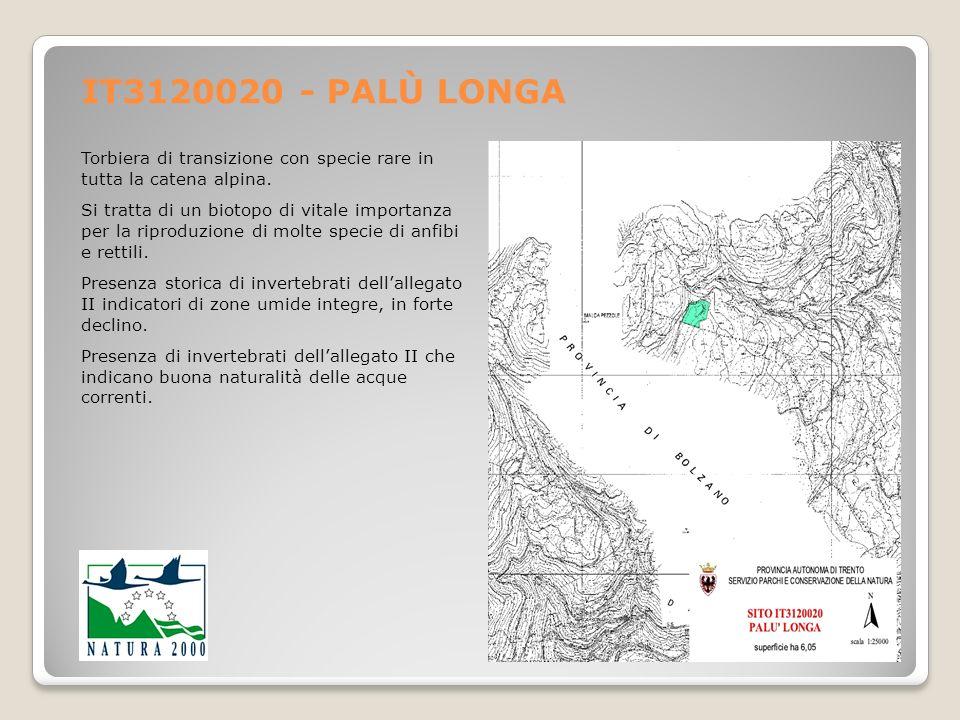 IT3120020 - PALÙ LONGA Torbiera di transizione con specie rare in tutta la catena alpina. Si tratta di un biotopo di vitale importanza per la riproduz