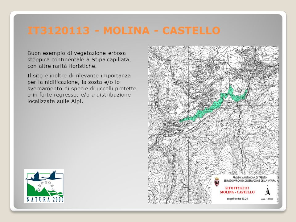 IT3120113 - MOLINA - CASTELLO Buon esempio di vegetazione erbosa steppica continentale a Stipa capillata, con altre rarità floristiche. Il sito è inol
