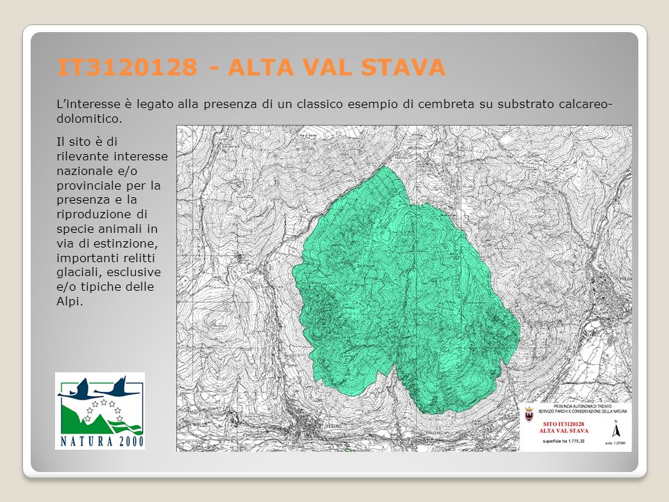 IT3120128 - ALTA VAL STAVA Linteresse è legato alla presenza di un classico esempio di cembreta su substrato calcareo- dolomitico. Il sito è di rileva