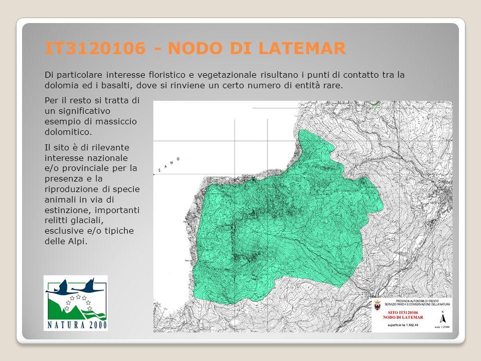 IT3120106 - NODO DI LATEMAR Di particolare interesse floristico e vegetazionale risultano i punti di contatto tra la dolomia ed i basalti, dove si rin