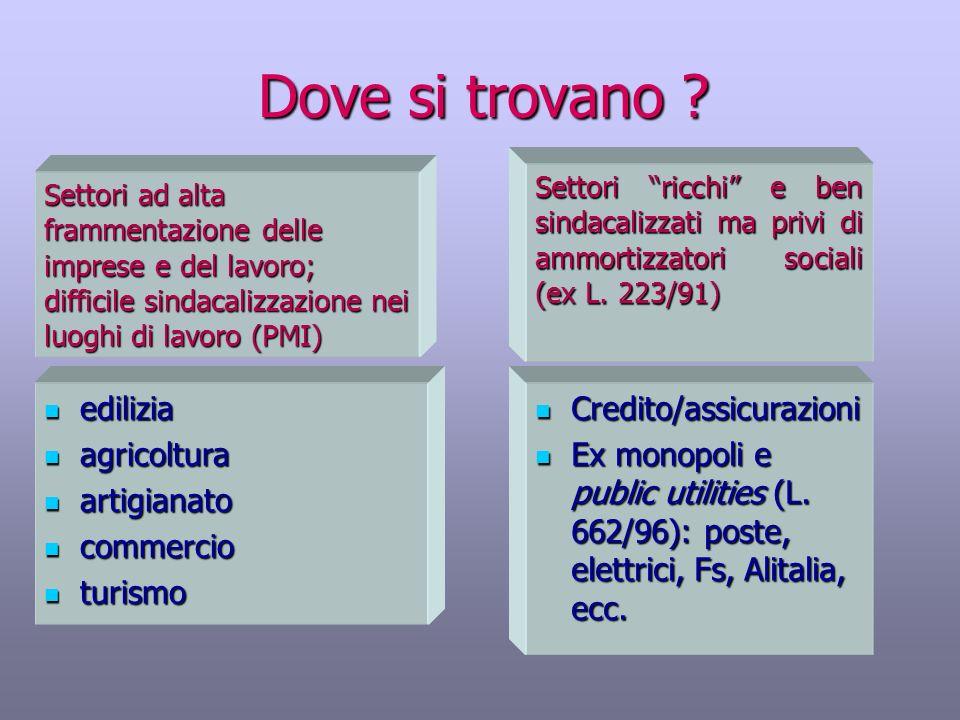 Dove si trovano ? Credito/assicurazioni Credito/assicurazioni Ex monopoli e public utilities (L. 662/96): poste, elettrici, Fs, Alitalia, ecc. Ex mono