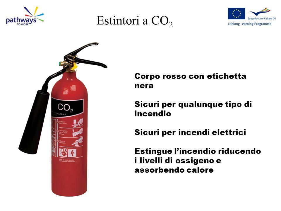 Estintori a CO 2 Corpo rosso con etichetta nera Sicuri per qualunque tipo di incendio Sicuri per incendi elettrici Estingue lincendio riducendo i livelli di ossigeno e assorbendo calore