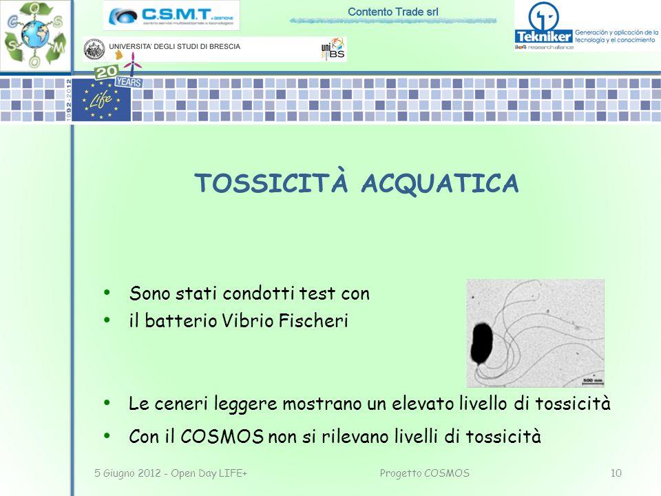Sono stati condotti test con il batterio Vibrio Fischeri Le ceneri leggere mostrano un elevato livello di tossicità Con il COSMOS non si rilevano live