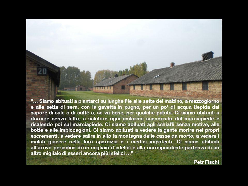Ed è così che il destino inesorabile di Auschwitz comincia a svolgersi anche per noi, automaticamente indipendentemente dalla nostra volontà.