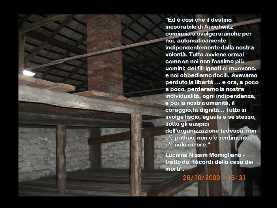 Ed è così che il destino inesorabile di Auschwitz comincia a svolgersi anche per noi, automaticamente indipendentemente dalla nostra volontà. Tutto av