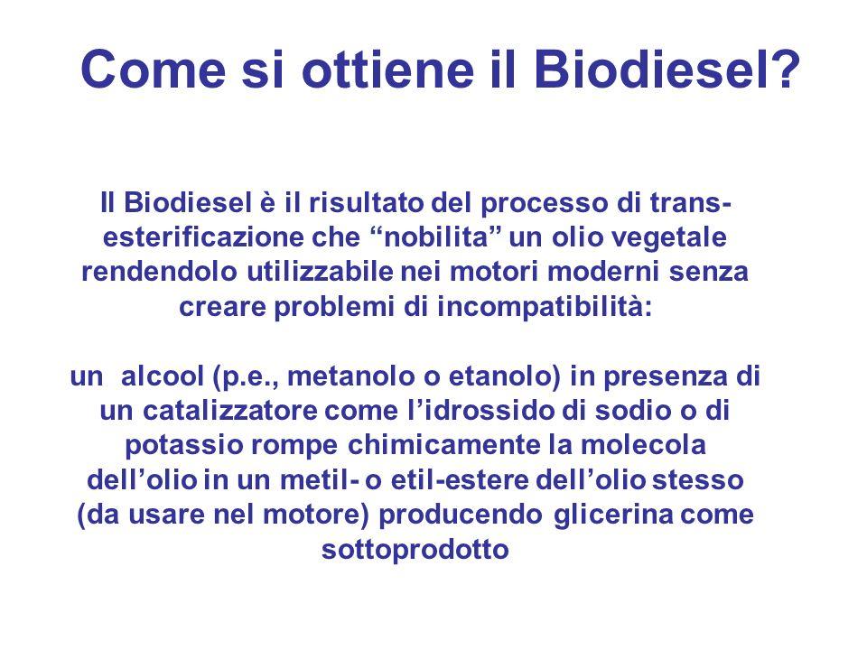 Il Biodiesel è il risultato del processo di trans- esterificazione che nobilita un olio vegetale rendendolo utilizzabile nei motori moderni senza crea