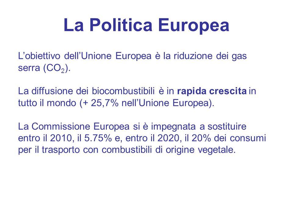 La Politica Europea Lobiettivo dellUnione Europea è la riduzione dei gas serra (CO 2 ). La diffusione dei biocombustibili è in rapida crescita in tutt