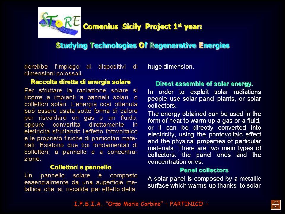 Comenius Sicily Project 1 st year: Studying Technologies Of Regenerative Energies Per sottolineare il valore di questa fonte di energia, basti pensare