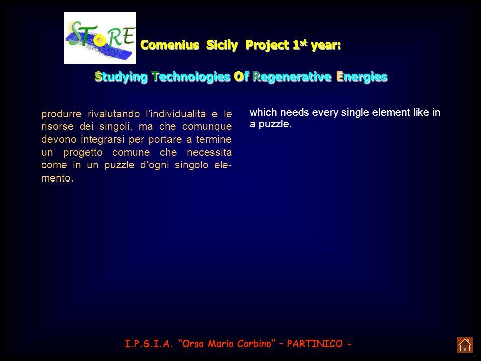 Comenius Sicily Project 1 st year: Studying Technologies Of Regenerative Energies energia prodotta solare facilmente con- vertibile, immagazzinabile e