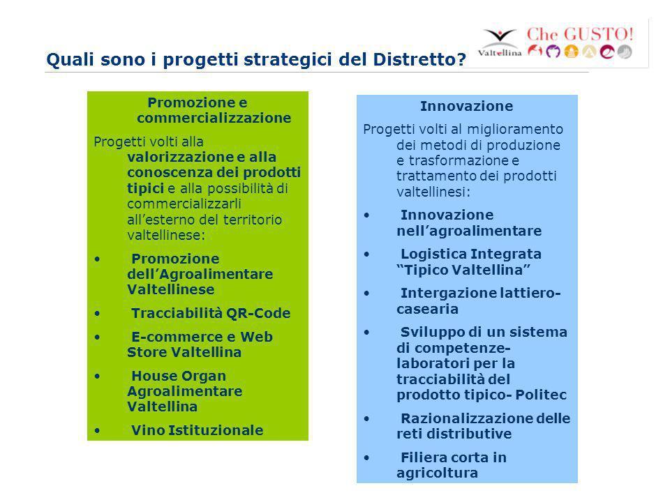 www.eurca.com 4 Quali sono i progetti strategici del Distretto.