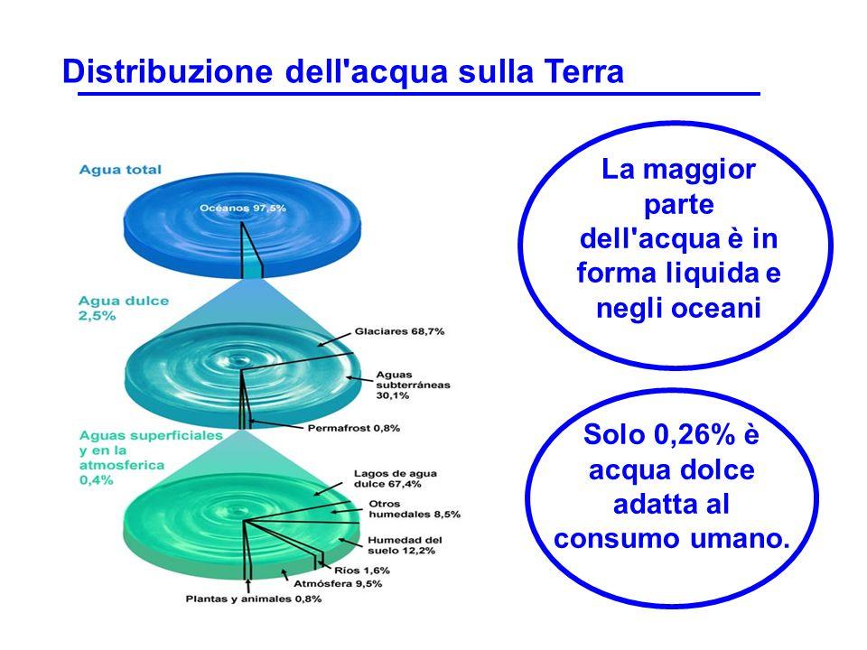 La maggior parte dell'acqua è in forma liquida e negli oceani Solo 0,26% è acqua dolce adatta al consumo umano. Distribuzione dell'acqua sulla Terra