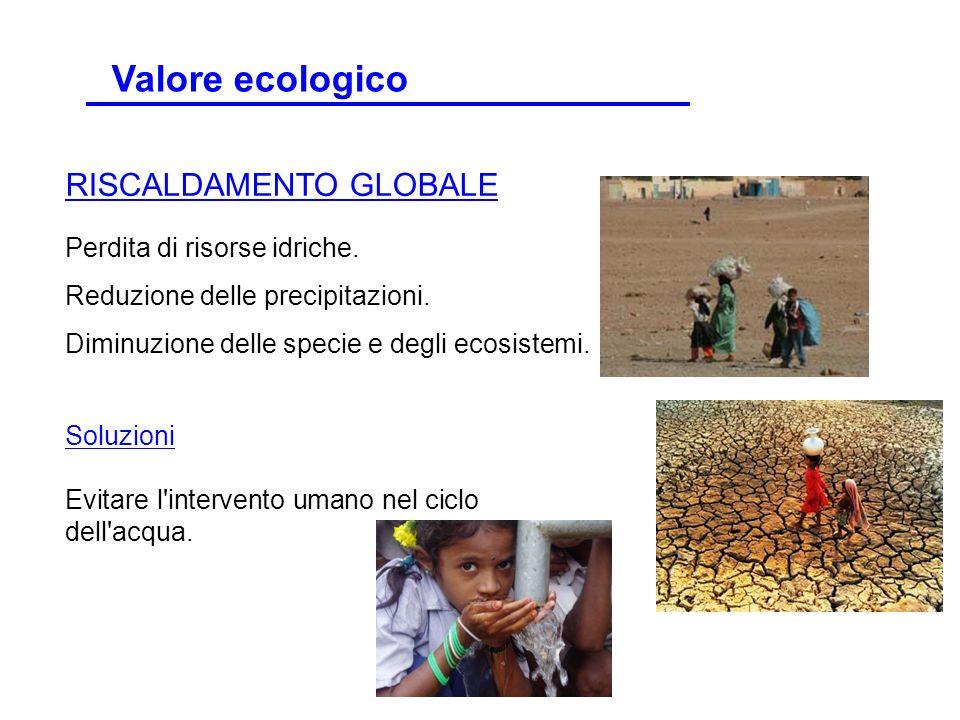 Perdita di risorse idriche. Reduzione delle precipitazioni. Diminuzione delle specie e degli ecosistemi. RISCALDAMENTO GLOBALE Soluzioni Evitare l'int