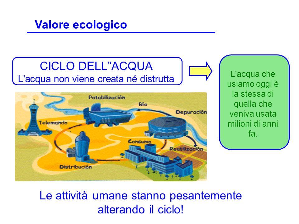 CICLO DELLACQUA L'acqua non viene creata né distrutta Le attività umane stanno pesantemente alterando il ciclo! L'acqua che usiamo oggi è la stessa di