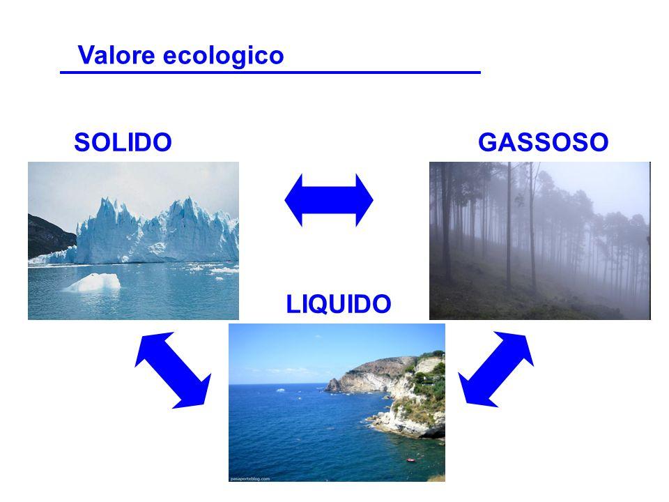 SOLIDO LIQUIDO GASSOSO Valore ecologico