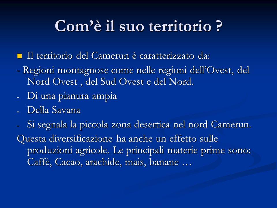 Comè il suo territorio ? Il territorio del Camerun è caratterizzato da: Il territorio del Camerun è caratterizzato da: - Regioni montagnose come nelle